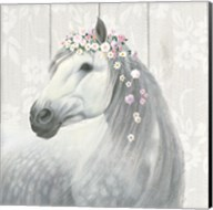 Spirit Stallion II on wood Square Fine-Art Print