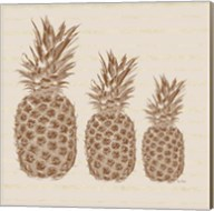 Three Pineapples Fine-Art Print