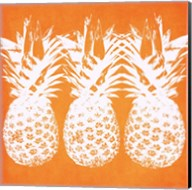 Orange Pineapples Fine-Art Print