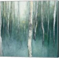 Forest Dream Fine-Art Print