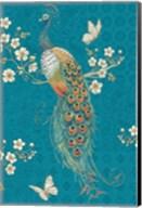 Ornate Peacock XE Fine-Art Print