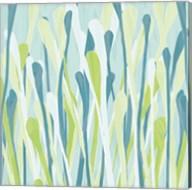 Grasses III Fine-Art Print