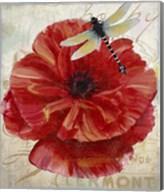 Le Pavot Dragonfly Fine-Art Print