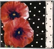 Scarlet Poppies II Fine-Art Print