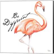 Be Different Flamingo I Fine-Art Print