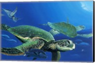 Green Sea Turtles Fine-Art Print