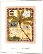 Vacance Tropicale Fine-Art Print
