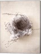 Nest III Fine-Art Print
