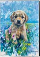 Cocker Spaniel Puppy Love Fine-Art Print