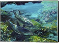 Tranquility Atlantic Bottlenose Dolphins Fine-Art Print