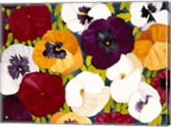 Sacred Pansies Fine-Art Print