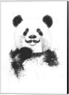 Funny Panda Fine-Art Print