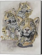 Jaguars Fine-Art Print