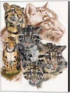 Clouded Leopard with Ghost Image Fine-Art Print