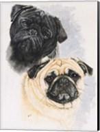 Pugs Fine-Art Print