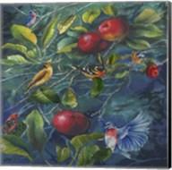 Orchard Life Image Fine-Art Print
