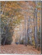 Walking Fine-Art Print