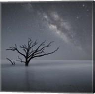 Milky Way In Botany Bay 1 Fine-Art Print