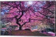 Pink Tree 2 Fine-Art Print