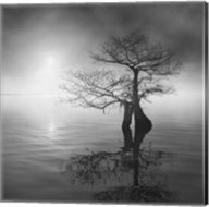 Sunrise Fog Fine-Art Print