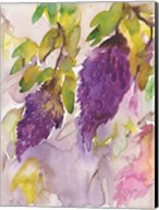 Wisteria I Fine-Art Print