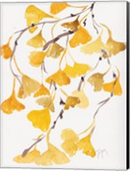 Golden Gingko A Fine-Art Print