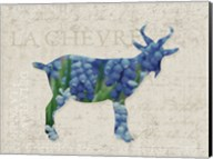 Flower Farm Goat Fine-Art Print