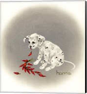 Dalmation 5 - Chile Dog Fine-Art Print
