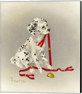Dalmation 4- Hot Diggity Dog Fine-Art Print