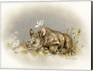 Rhino Baby Fine-Art Print