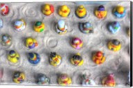 Rubber Duckies from Above Fine-Art Print