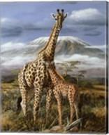 Kilimanjaro Pair Fine-Art Print