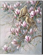 Doves And Magnoilas Fine-Art Print