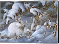 Winter Hares Fine-Art Print