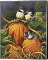 Chickadees And Pumpkins Fine-Art Print