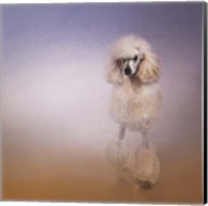 On The Way To The Salon Standard Poodle Fine-Art Print