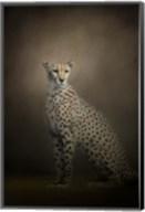 The Elegant Cheetah Fine-Art Print