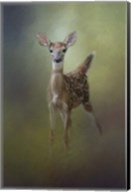 Fawn In The Forest Fine-Art Print