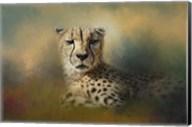 Cheetah Enjoying A Summer Day Fine-Art Print