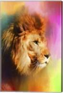 Colorful Expressions Lion Fine-Art Print