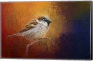 Autumn Sparrow Fine-Art Print