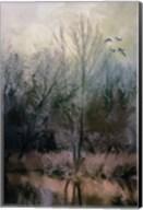 Morning At Fairground Swamp Fine-Art Print