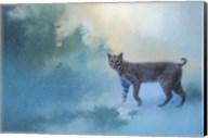 Winter Bobcat Fine-Art Print