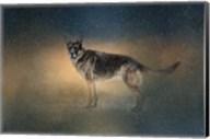 Winter Shepherd Fine-Art Print