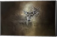 In Our Woods Fine-Art Print