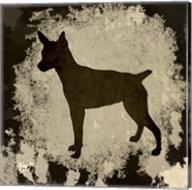 Chihuahua Fine-Art Print