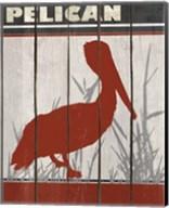 Pelican Fine-Art Print