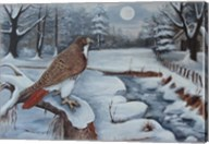 The Red Tailed Hawk Fine-Art Print