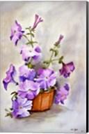 Petunia Fine-Art Print
