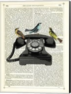 Birdcall Fine-Art Print